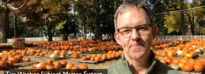 Top Pumpkin Uses for Halloween, Thanksgiving and Midterm Elections